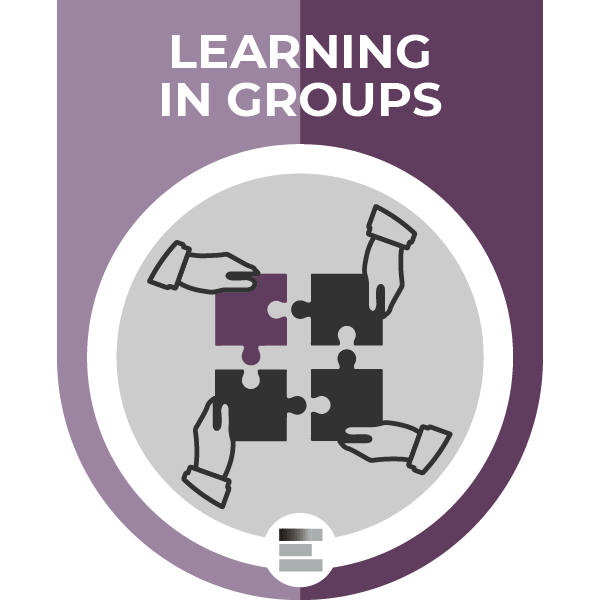 Learning in Groups badge